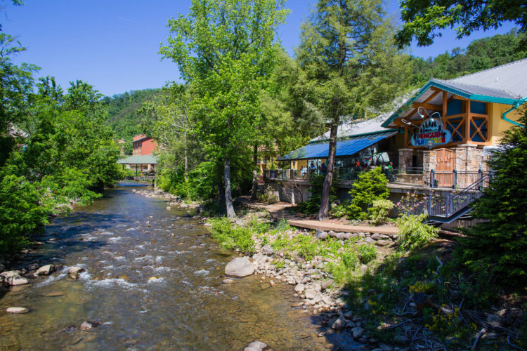 2017 National Conference – Gatlinburg, TN